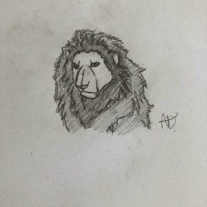 challenge-dessin-lion-les-ateliers-creatifs-villers-cotterets