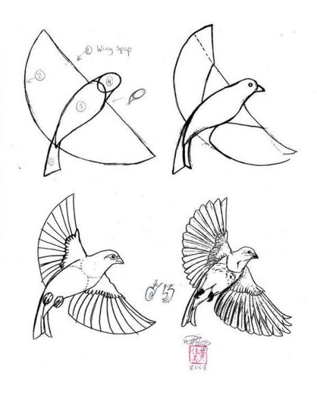challenge oiseau